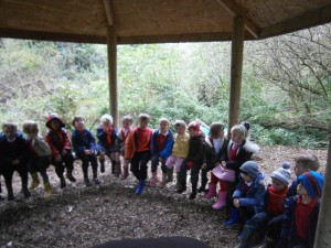 We have been looking at Autumn and the signs of the season. We went to our wildlife area to see what we could find.