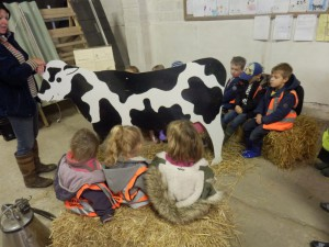 We learnt how to milk a cow by hand and we practised on Charlotte the wooden cow.